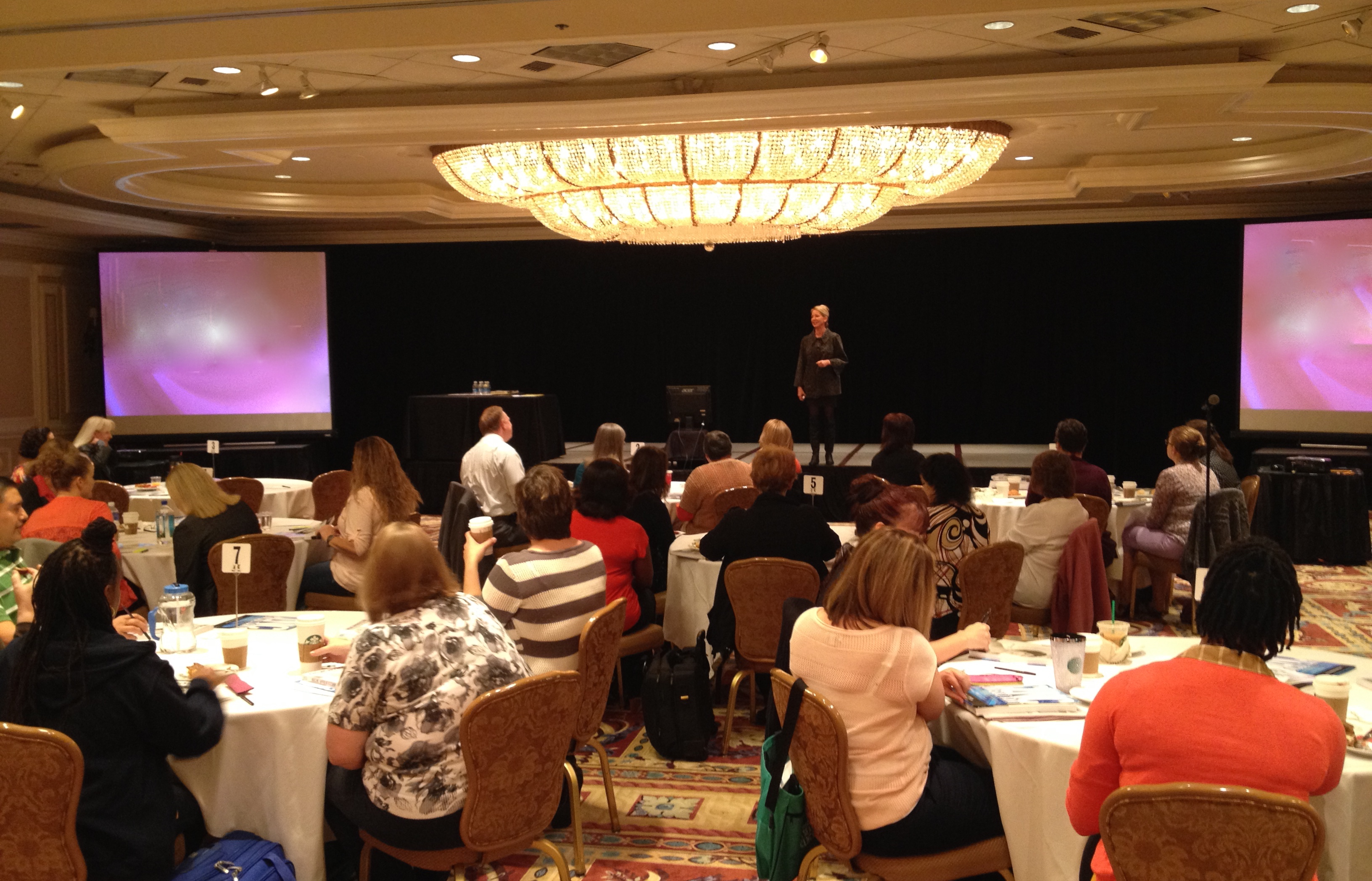 Presenting to Healthcare Professionals in Las Vegas in 2015.